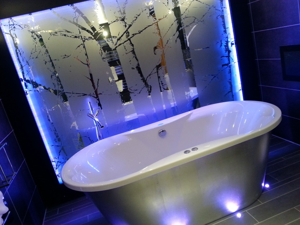 The fabulous bathroom in the Coach House suite!